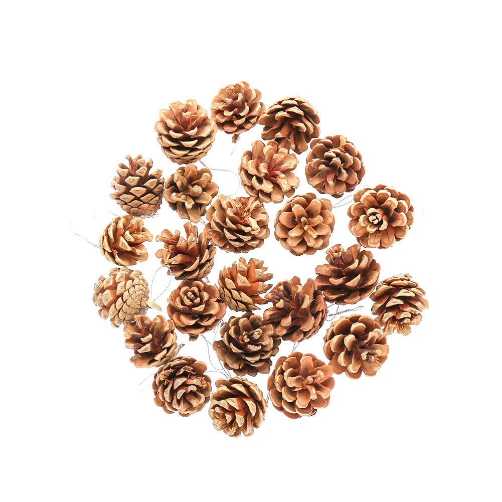 FANTESI 30 Pieces 1.57 Inch Christmas Pine Cones Ornament Natural PineCones With String Pendant Crafts for Gift Tag Christmas Tree Party Hanging Decoration(Brown)
