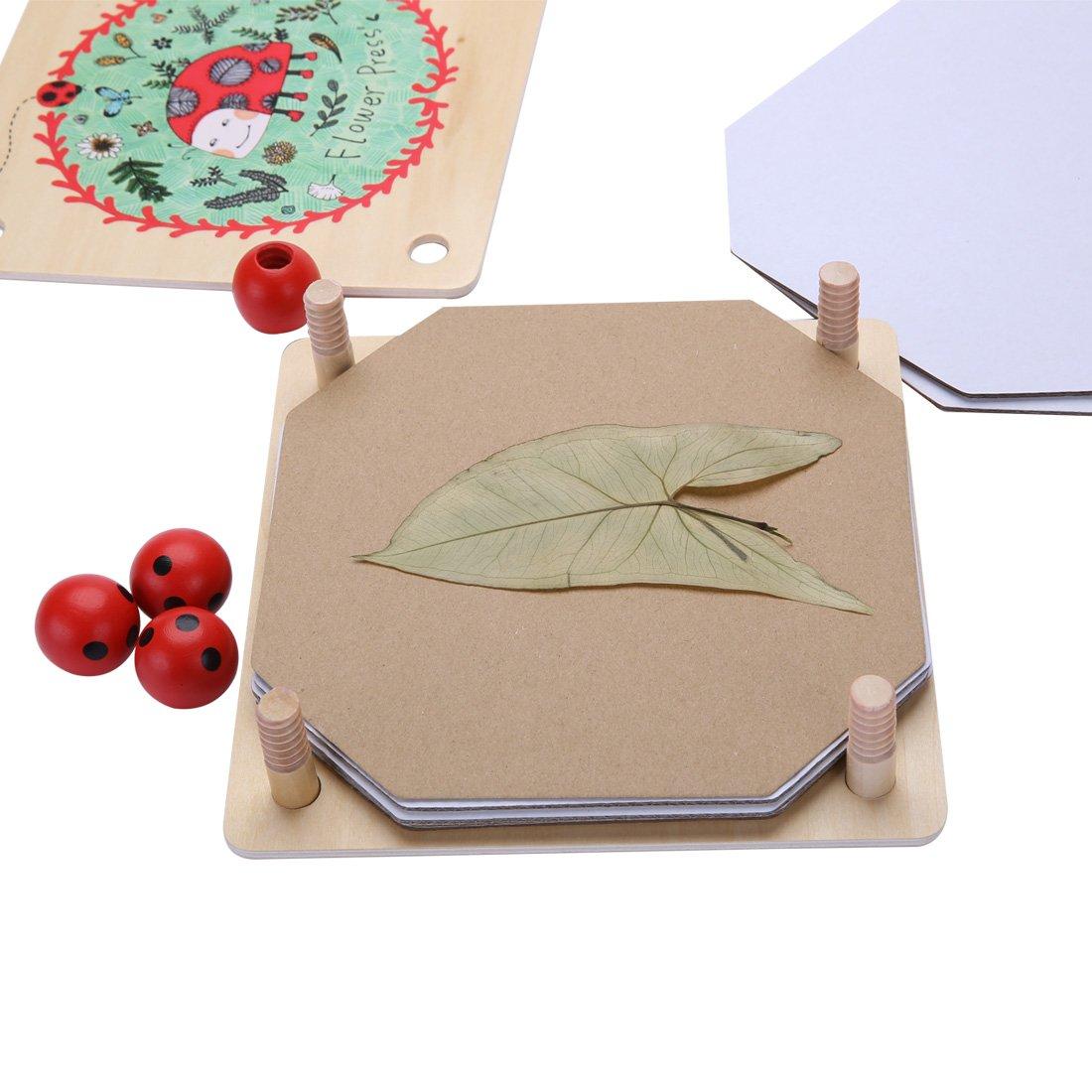 Mideer Flower Press Kit Art Craft Nature Press