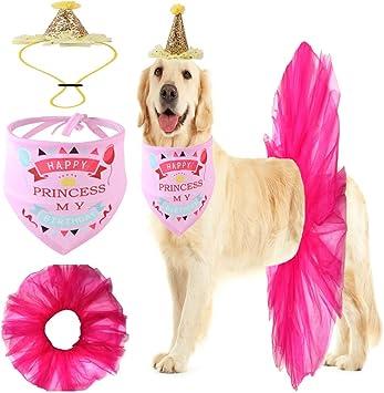 Amazon.com: GAMUDA - Bandana de cumpleaños para perro ...