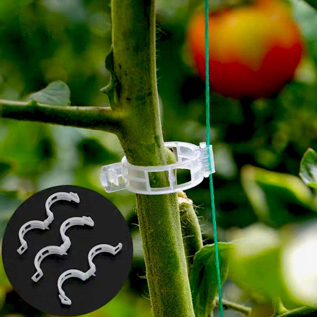 SHOHEN 200PCs Plant Support Garden Clip Vine Clip Used for Flower Cine Rope Tomato Orchid Upright Growth Garden Support Clip Make The Plant Healthier