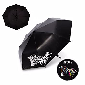 Paraguas - Cambio De Color Después De La Lluvia , De Secado ...
