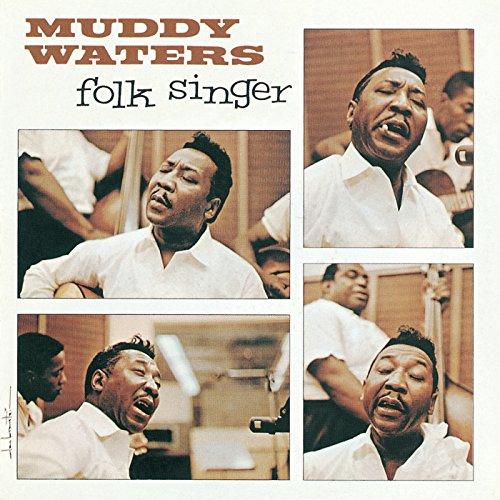 Muddy Waters Slide Guitar - 5