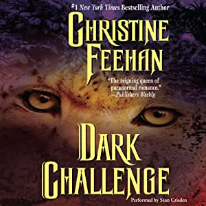 Dark Challenge Audiobook