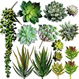 Supla Pack of 14 Assorted Artificial Succulents Picks Textured Aloe Faux Succulent Pick Succulent Stems Fake Succulent Bouquet String of Pearls Succulent Faux Succulent Floral Arrangement Accent Larger Image