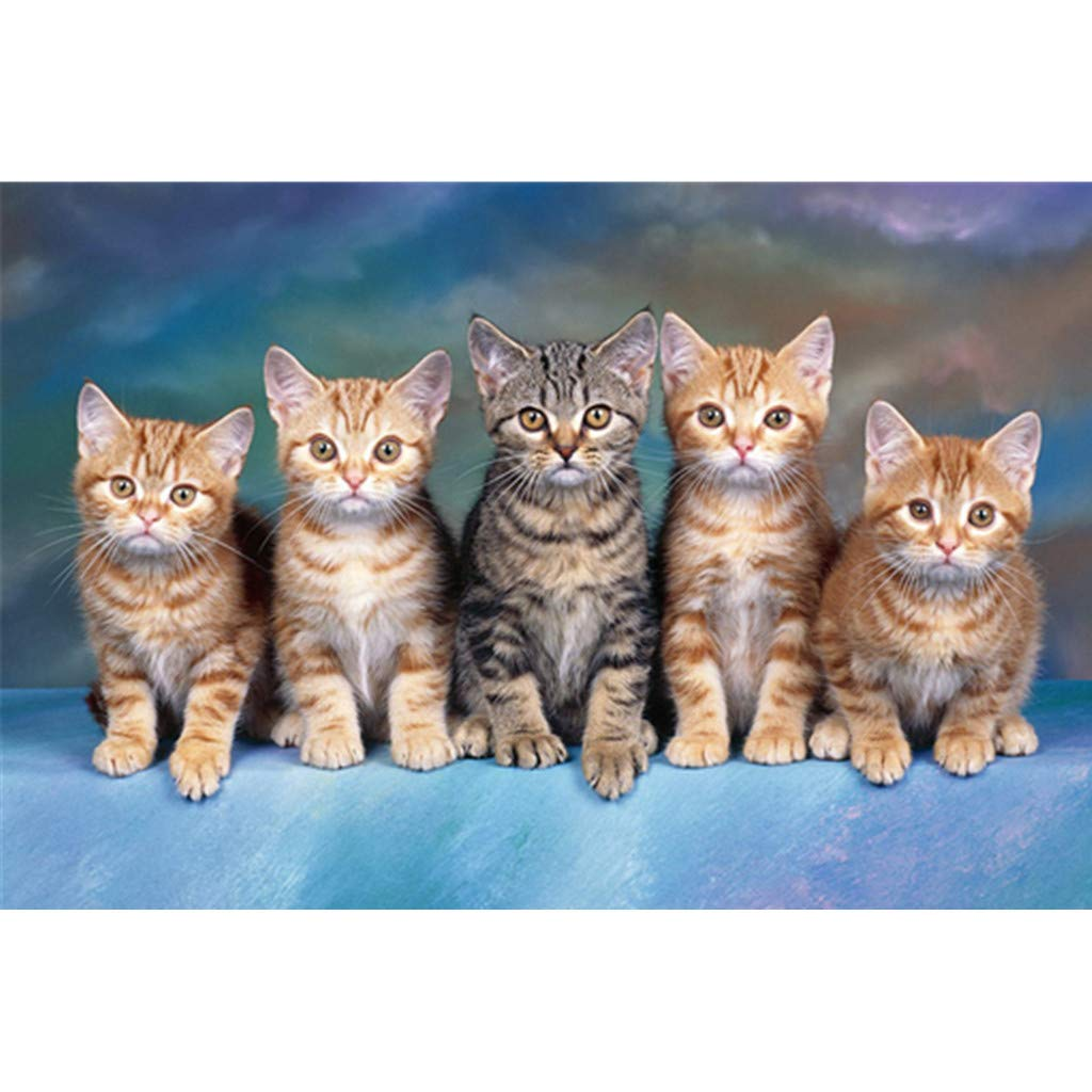 Allywit Cute Cat 5D Embroidery Paintings Rhinestone Pasted DIY Diamond Paintings Part Round Embroidery Kits Arts Home