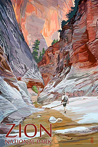 Zion National Park, Utah - Slot Canyon (12x18 Art Print, Wall Decor Travel Poster) (Best Slot Canyon Hikes In Utah)