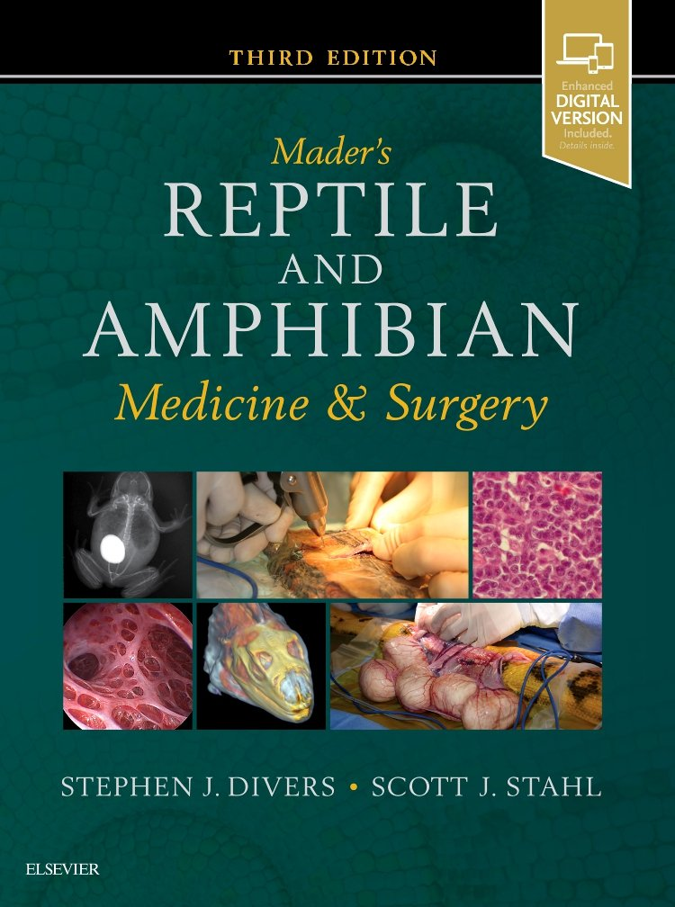 Mader's Reptile and Amphibian Medicine and Surgery by Saunders