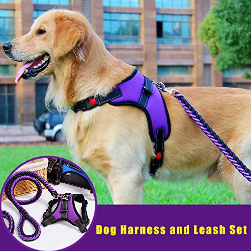 Black and Purple XL Black and Purple XL J.Y Dog Harness, Dog Body Padded Outdoor Vest Complete Harness & Leash Set Easy Control for Small Medium Large Dogs (XL, Black and Purple)