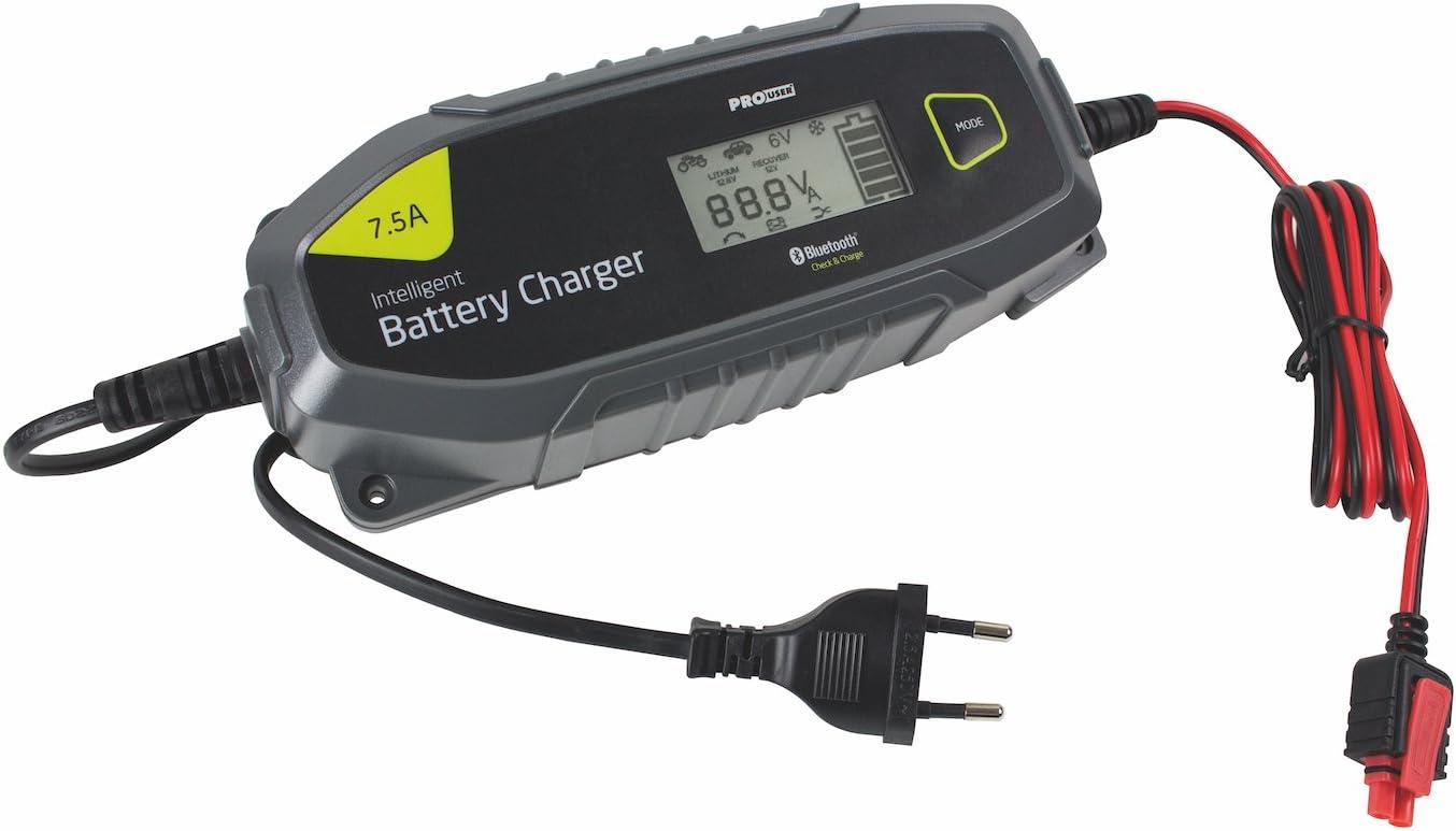 Pro-User IBC25000 18174 12V und 24V 25 Amp Intelligentes Batterieladeger/ät f/ür Bleibatterien