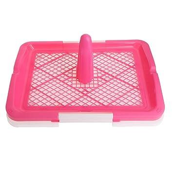 Kalttoy - Bandeja higiénica para Mascotas, para Inodoro, Perros, Cachorros, Gatos, para Aseo con Limpieza de Pilar: Amazon.es: Productos para mascotas