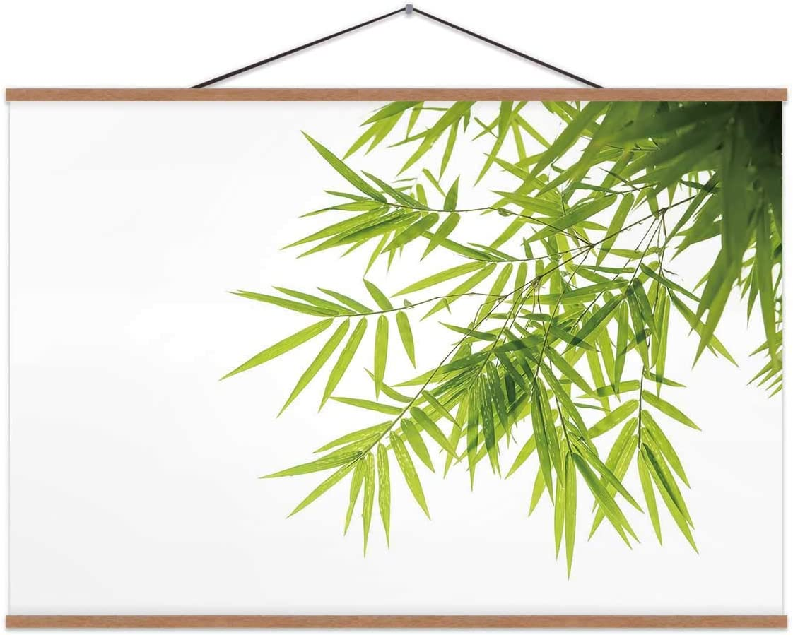 TinYida Bamboo Leaves,Magnet Print Posters Isolated On White for Wall 24X12In
