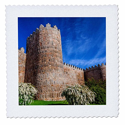 3dRose Danita Delimont - Architecture - Outer walls surroud the city of Avila, Castile, Spain. - 20x20 inch quilt square (qs_257892_8) by 3dRose