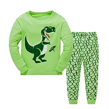 db2c4693e Amazon.com  EnjoCho 1-6Y Toddler Kids Boys Pyjamas Dinosaur ...