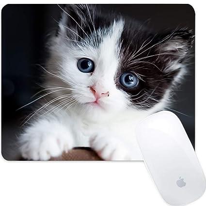 GEMYON. Alfombrilla de ratón para Gato, diseño Personalizado para ...