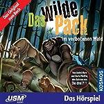 Das wilde Pack im verbotenen Wald (Das wilde Pack 6) | André Marx,Boris Pfeiffer