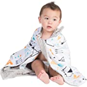 Boritar Baby Receiving Blanket for Boys and Girls Soft Minky with Double Layer Dotted Backing, Lovely Indian Style Tent Printed 30 x40