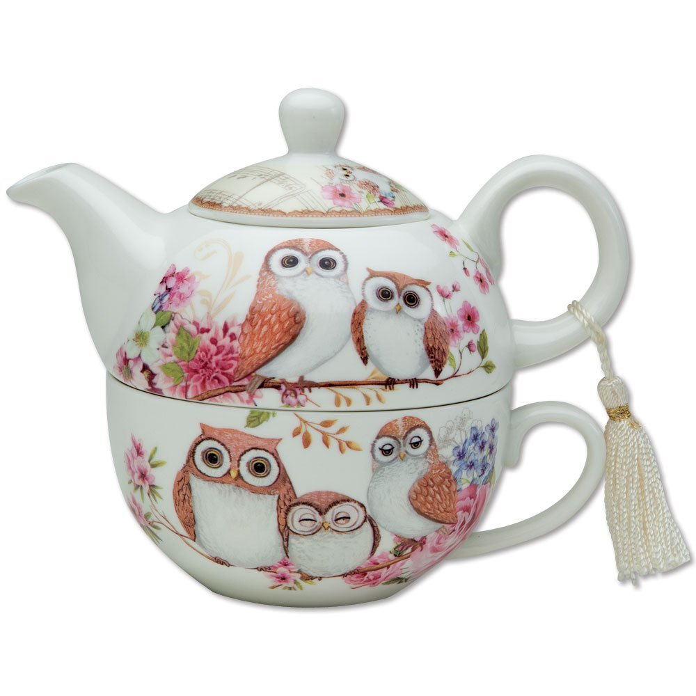Bits and Pieces - Tea For One Owls Design - Teapot and Cup Melville Direct
