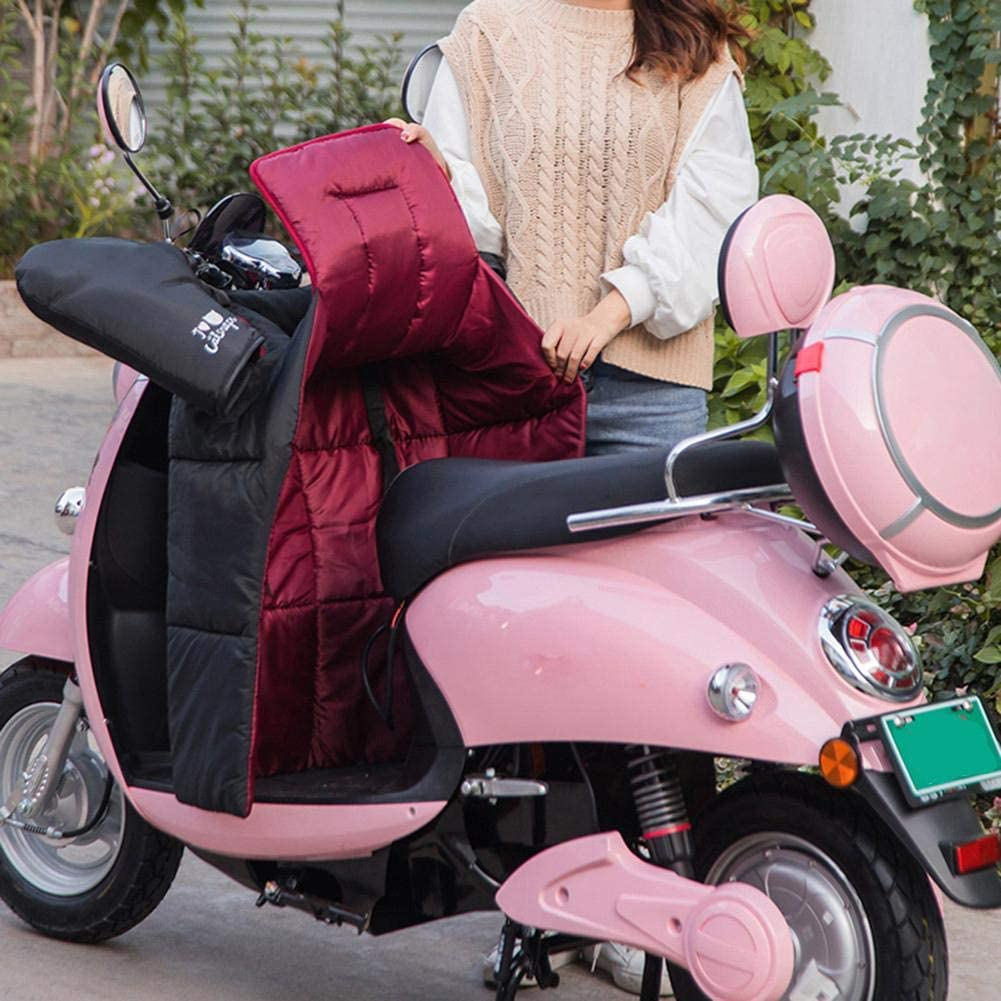 ckground Leg Lap Apron Cover with Handlebar Gloves Muffs Waterproof Windproof Leg Protector Cover for Scooter Electric Cars