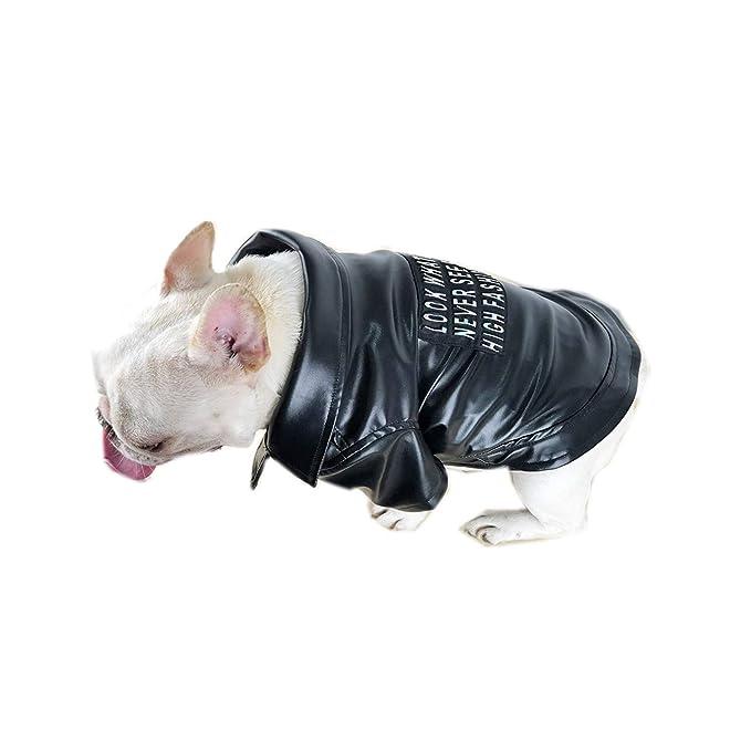 Ropa para Mascotas,Dragon868 Invierno Mascotas Perros Negro Chaqueta de la Motocicleta Abrigos Negro: Amazon.es: Ropa y accesorios