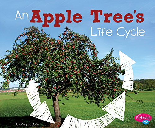 An Apple Tree's Life Cycle (Explore Life Cycles)