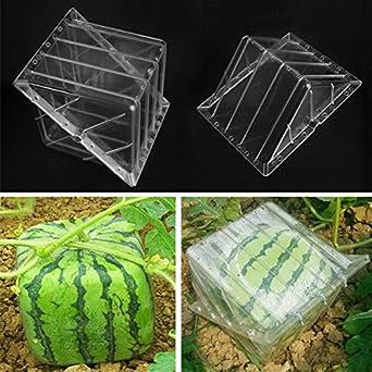 Forma cuadrada sandía calabaza Shaping molde herramienta de frutas molde de formación de crecimiento para jardín: Amazon.es: Amazon.es