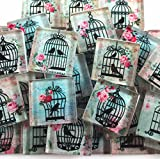 Glass Mosaic Tiles - Shabby Chic Pink Roses Birds Bird Cages Floral 1'' Squares