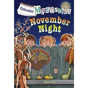 November Night Audiobook