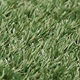 Halloween Sale!!! EZ HYBRID SERIES 3000 SYNTHETIC TURF - 6ft x 20ft
