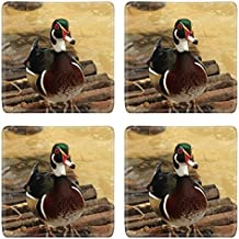MSD Square Coasters Non-Slip Natural Rubber Desk Coasters design 23303345 mandarin duck
