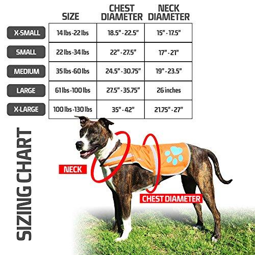Buy dog reflective vest