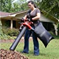 Leaf Vacuum Shredder Blower Handheld Bag 2 Speed Electric Mulcher Yard Lawn Vac .#GH45843 3468-T34562FD194603