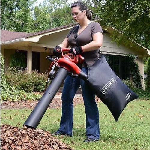 best leaf shredder 002