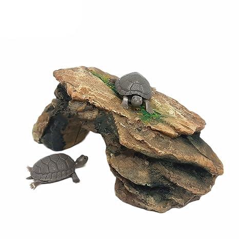 dragonaur - Plataforma de simulación para Acuario, pecera, Tortuga, Reptil, Isla: Amazon.es: Productos para mascotas