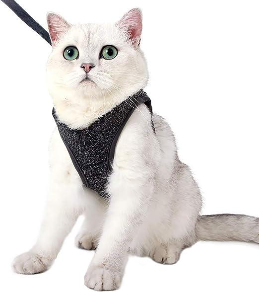 Juego de arnés y correa para gatos Ultra ligero para caminar Prueba de escape Paso suave ajustable en amortiguación acolchada Chaleco para gatitos Mascotas Cachorro: Amazon.es: Productos para mascotas