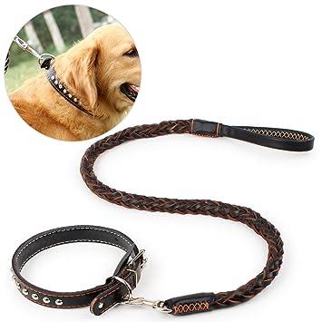 Collar De Correa Para Perros, Legendog Dog Lead Leash Collar De Cuero Trenzado Para Perros Con Correa Ajustable Para Perros S: Amazon.es: Productos para ...