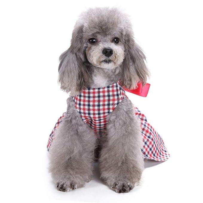 Amazon.com: Perro Sundress mascota vestido de boda abrigo ...