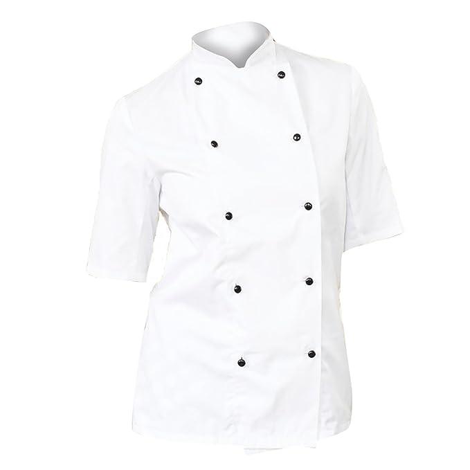 Dennys - Giacca da Chef Leggera Maniche Corte - Donna  Amazon.it   Abbigliamento 16fda5904ee1