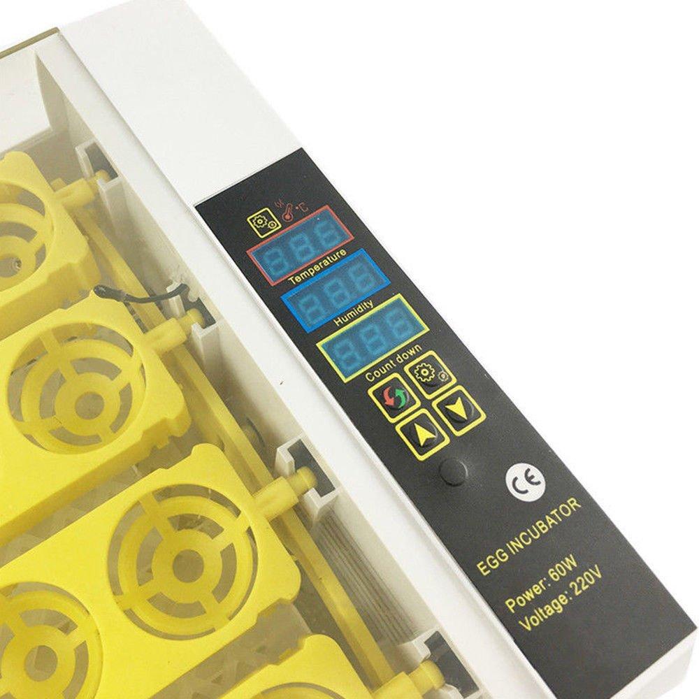 Z&Y Incubadora Automática Total de 24 Huevos incubadora Criadora incubadora Inteligente Digital con Pantalla LED de Temperatura y Sensor de Temperatura ...