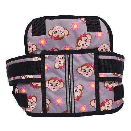 Cinturón de Seguridad para niños y niñas, para Motocicleta, arnés ...