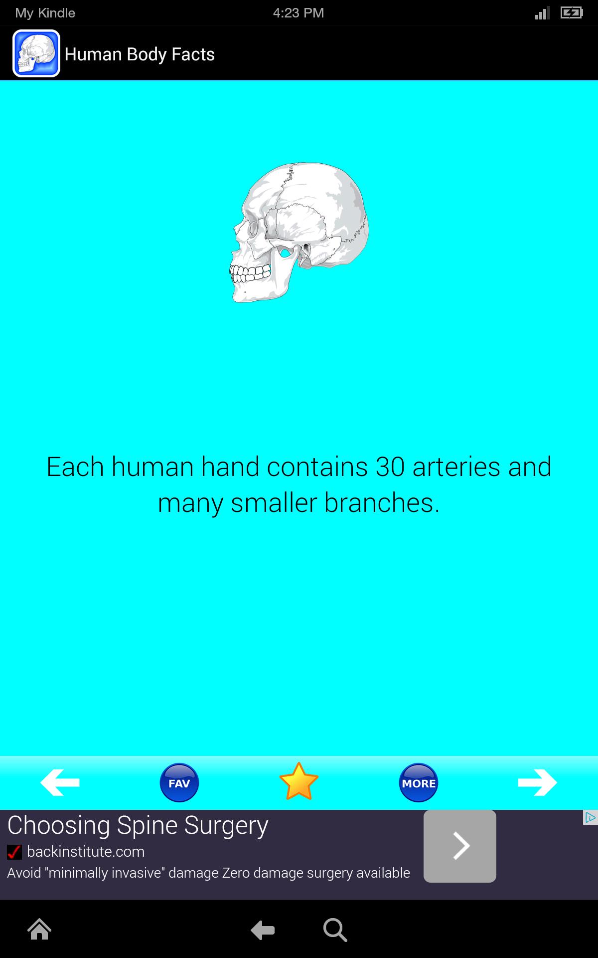 Amazon.com: Human Body Facts: Fun Human Anatomy and Physiology Flash ...