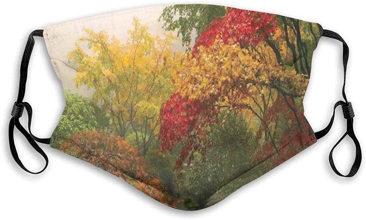 Dust Windproof Scraf Bandanas Adjustable,Falls Colors National Country Park Nature Observation Base Perspective Photo