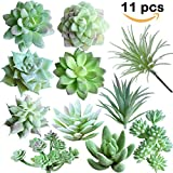 #6: Supla 11 Pcs Mini Artificial Succulents Picks Unpotted Faux Succulent Assortment in Flocked Green in different type different size Succulents Echeveria Agave Floral Arrangement Mother Day' s Gift
