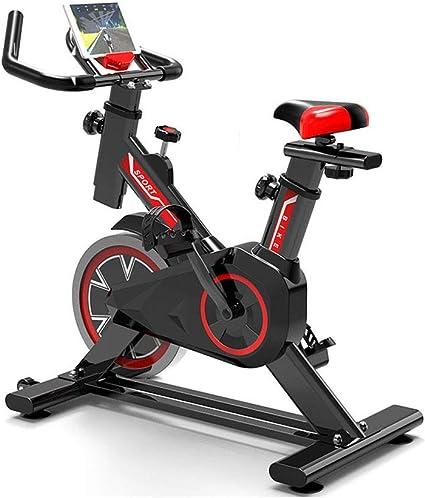 WuoooLi Bicicleta Estática Profesional, Ajustable Resistencia, con ...