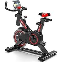 WuoooLi Bicicleta Estática Profesional, Ajustable Resistencia, con Pantalla LCD,Equipo de Entrenamiento de Entrenamiento Cómodo Cojín Sillín para Gimnasio de Oficina en Casa, Unisex