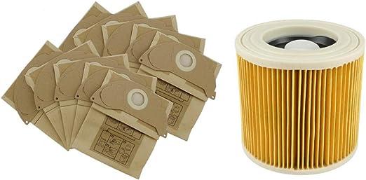Amazon.es: karcher repuestos Filtros para aspiradoras