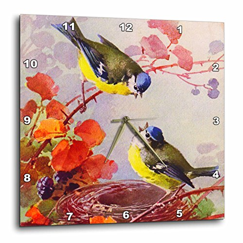 3dRose DPP_151404_3 Catherine Klein Blue Tit Or Chickadee Birds Nest Vintage Painting Copy Sweet Little Bird Art Wall Clock, 15 by 15-Inch