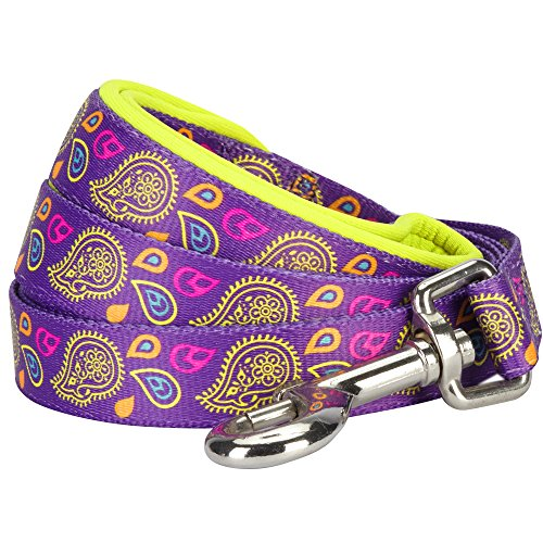 Blueberry Pet 5 Colors Paisley Flower Print Dog Leash with Soft & Comfortable Handle, 5 ft x 5/8, Dark Orchid, Small, Leashes for Dogs