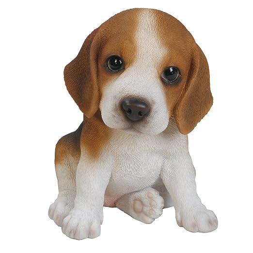 5 opinioni per Vivid Arts Pet Pals- Statuetta decorativa a forma di cucciolo di Beagle