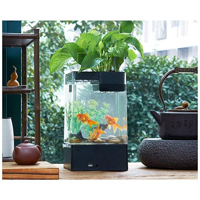 Amazon.com : Fish Tank Desktop Aquarium Mini Self-Cleaning Grass Fish Tank Starter Kits with LED Colorful Lighting Cube Shaped Aquarium with Pedestal Base ...
