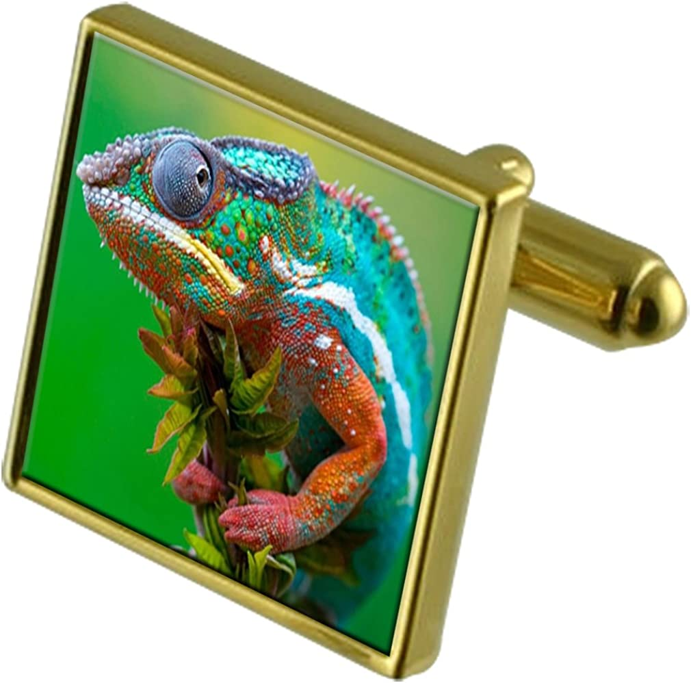 Select Gifts Iguana Gold-Tone Cufflinks in Pouch